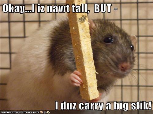 Okay...I iz nawt tall,  BUT -   I duz carry a big stik!
