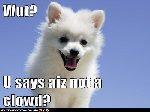 Wut?  U says aiz not a clowd?