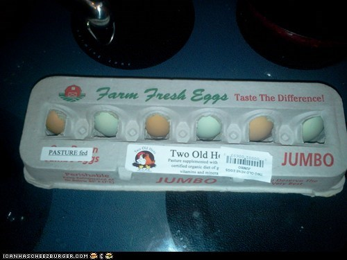 GREEN eggs from free range green-footed hens, for real!