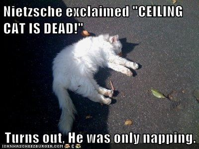 """Nietzsche exclaimed """"CEILING CAT IS DEAD!""""  Turns out, He was only napping."""