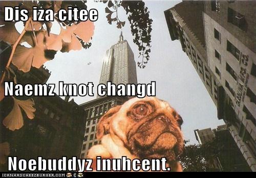 Dis iza citee Naemz knot changd  Noebuddyz inuhcent.