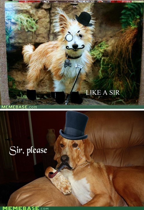 Sir, Please