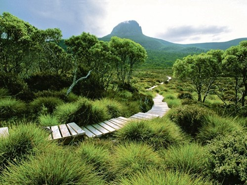 Walk on the Wild Side, Tasmania