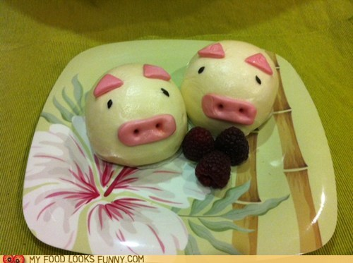 buns,custard,oink,pig
