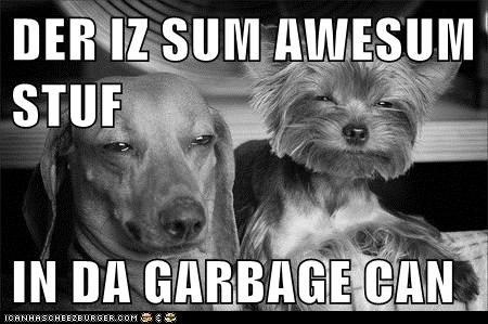 DER IZ SUM AWESUM STUF  IN DA GARBAGE CAN