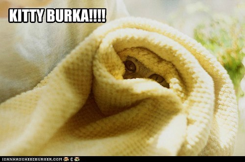 Kitty burka