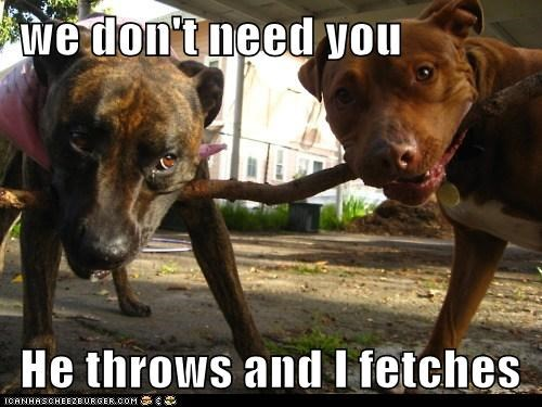 we don't need you   He throws and I fetches