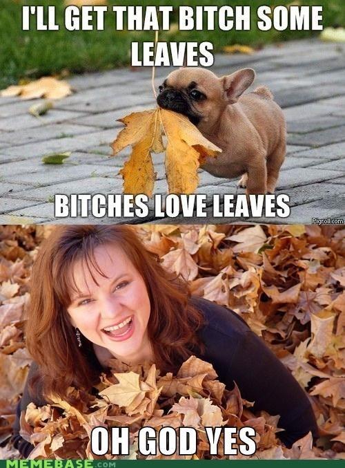 ladies,Ladies Love,leaves,love