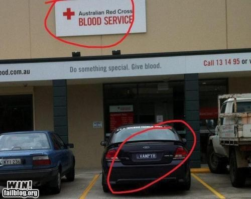 blood bank,car,donating blood,license plate,vampire
