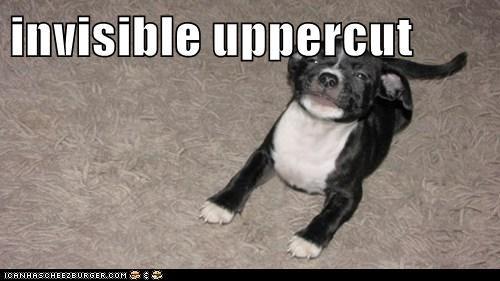 invisible uppercut