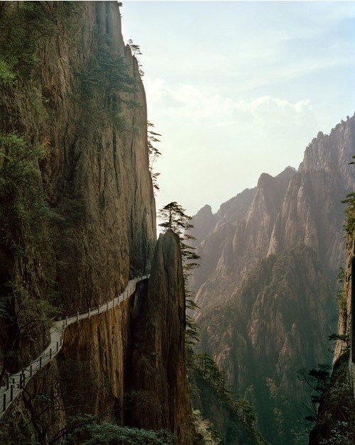 Cliff-side Path
