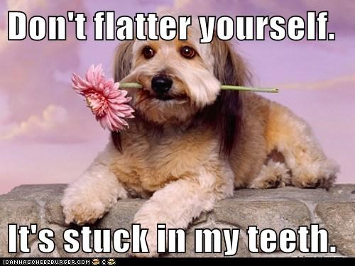 Don't flatter yourself.  It's stuck in my teeth.
