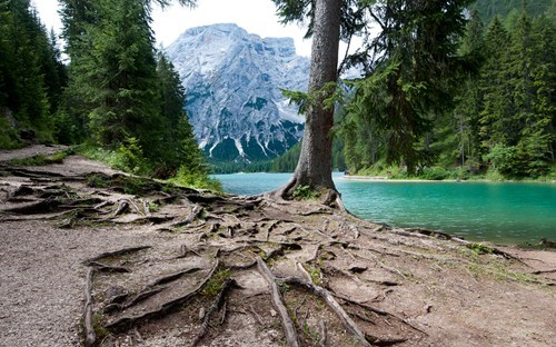 crag,Forest,getaways,lake,lakeside,mountains,tree,unknown location,water