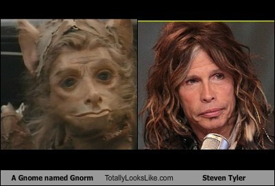 A Gnome named Gnorm Totally Looks Like Steven Tyler