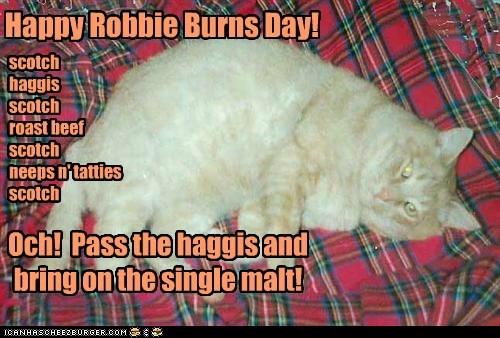 Happy Robbie Burns Day!