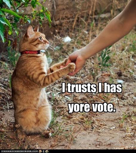campaign,caption,captioned,cat,hand,handshake,has,politics,shaking,trust,vote