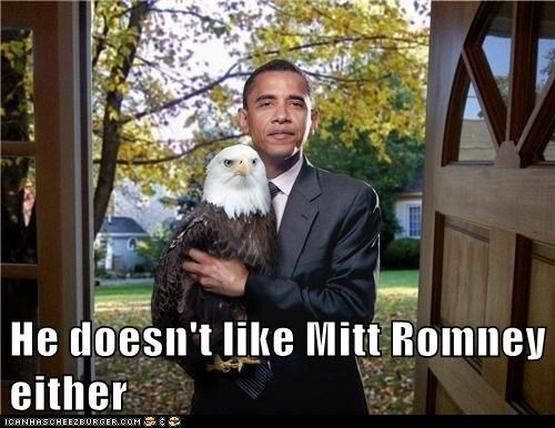 He doesn't like Mitt Romney either