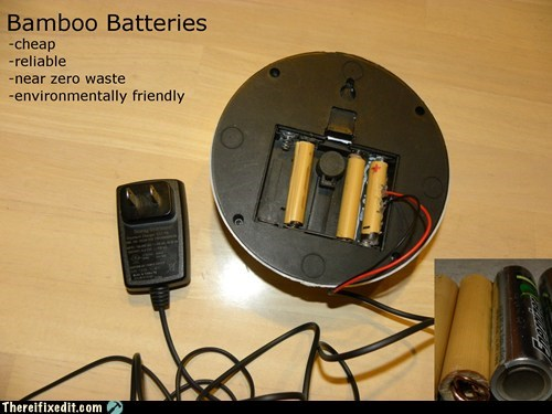 "Bamboo ""Batteries"""