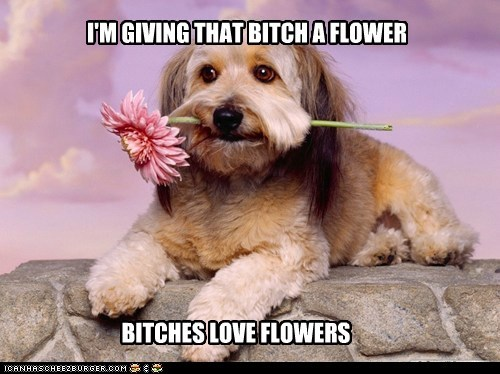 I'M GIVING THAT BITCH A FLOWER