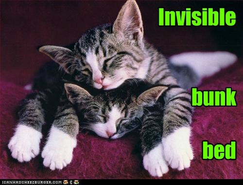 Invisible    bunk      bed