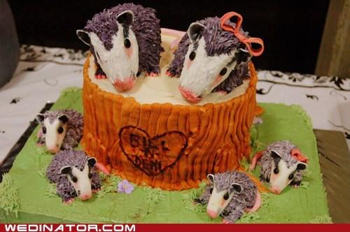 cakes,funny wedding photos,hedgehogs,wedding cake
