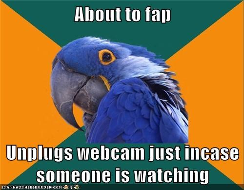 flap,Paranoid Parrot,unplug,webcam