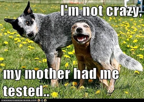 I'm not crazy,  my mother had me tested..
