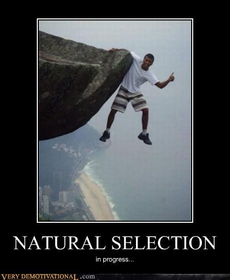 bad idea,cliff,idiots,natural selection,wtf