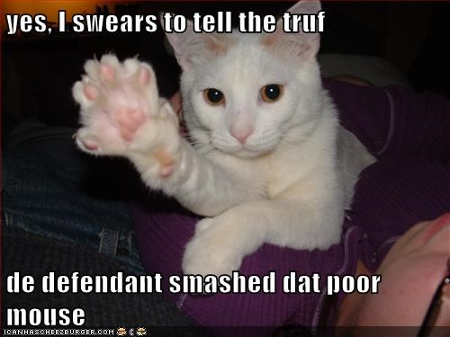 yes, I swears to tell the truf  de defendant smashed dat poor mouse
