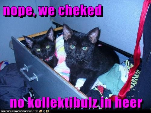 nope, we cheked  no kollektibulz in heer