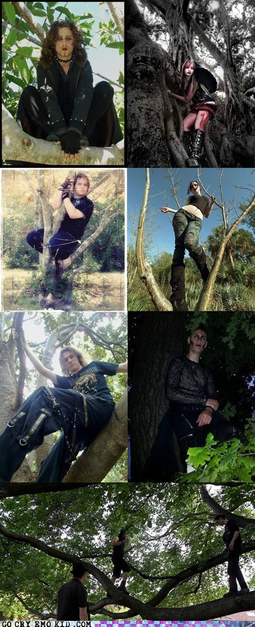Goths in Trees