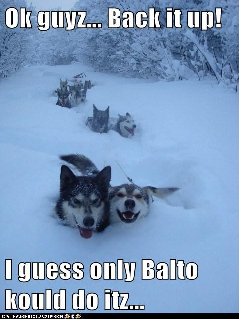 Ok guyz... Back it up!  I guess only Balto kould do itz...
