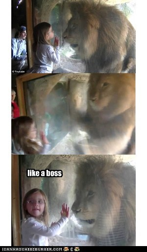 LionSpaz: Like a Boss