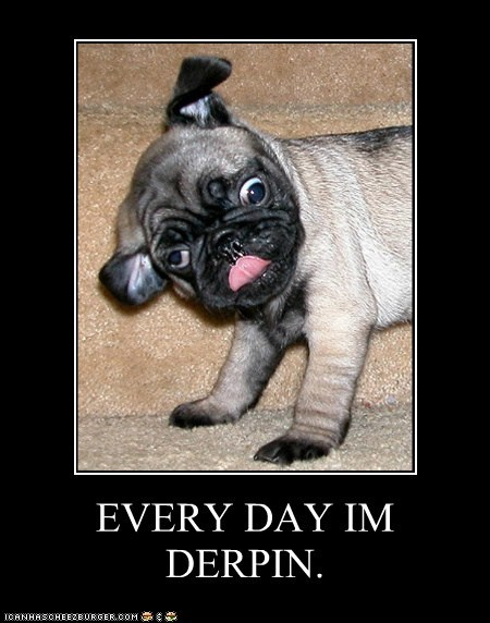 EVERY DAY IM DERPIN.
