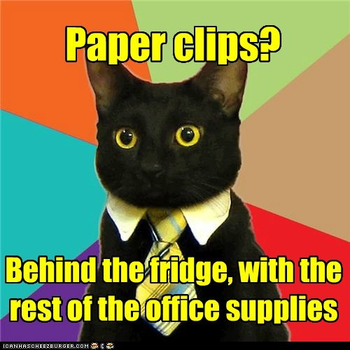 Business Cat: While You're Back There...
