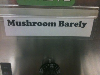 For Those Who Can Barely Stand Mushrooms