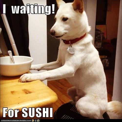 I  waiting!  For SUSHI