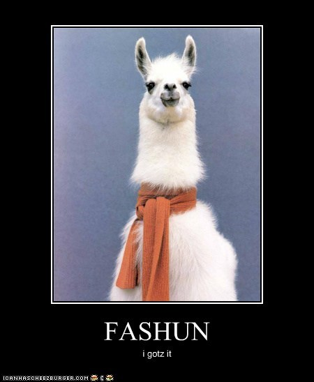 This Alpaca has More Style Than You and He's Not Even Trying