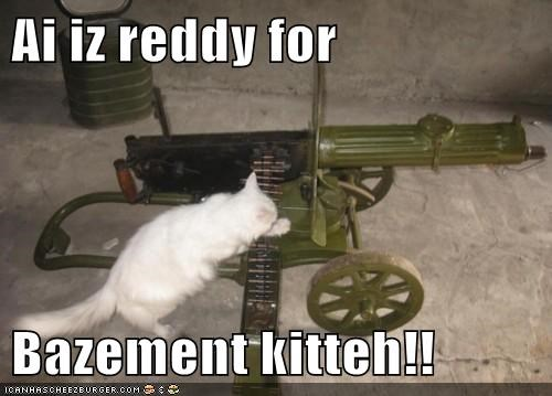 Ai iz reddy for  Bazement kitteh!!