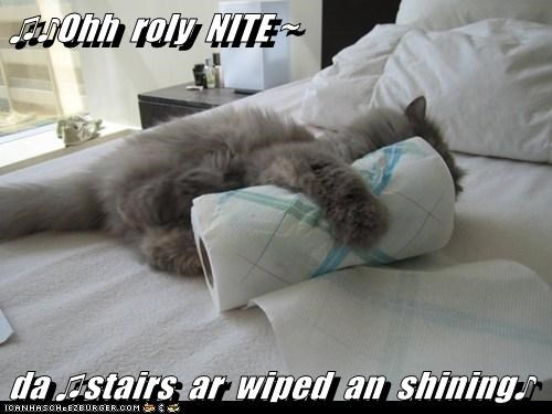 ♫♪Ohh  roly  NITE ~  da ♫stairs  ar  wiped  an  shining♪