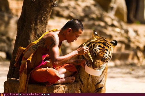 A Monk And His Tigger