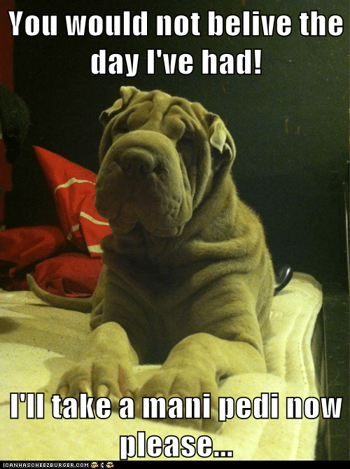 You would not belive the day I've had!  I'll take a mani pedi now please...