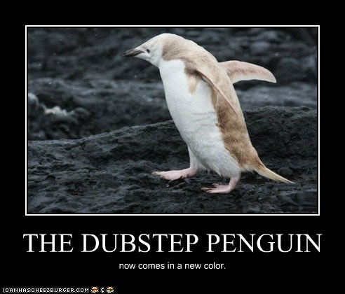 THE DUBSTEP PENGUIN