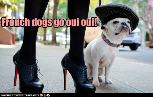 best of the week,fancy,fashion style,french,french bulldogs,Hall of Fame,hat,oui oui