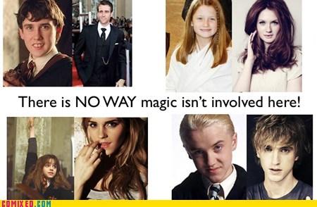 Harry Potter,magic,Memes,voldemort