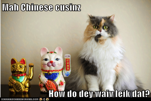Mah Chinese cusinz  How do dey waiv leik dat?