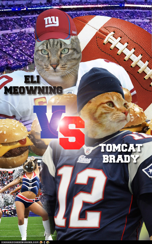Teh Sooper Bowl: The Mew England Purrtriots vs. The Mew York Feliants