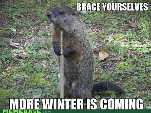 groundhog day,mods-just-watched-the-movie-so-this-post-isnt-old-its-just-groundhog-day-again,ned,puxatawny phil,Winter Is Coming