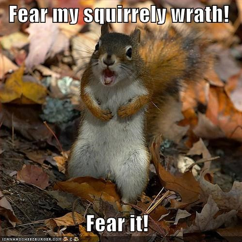 Fear my squirrely wrath!  Fear it!