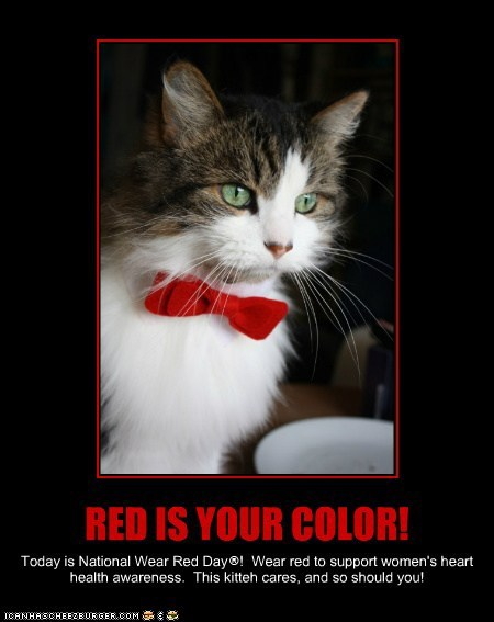 Kittehs Are Celebrating National Wear Red Day®!